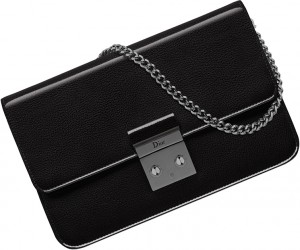 Dior-Smooth-Promenade-Pouch