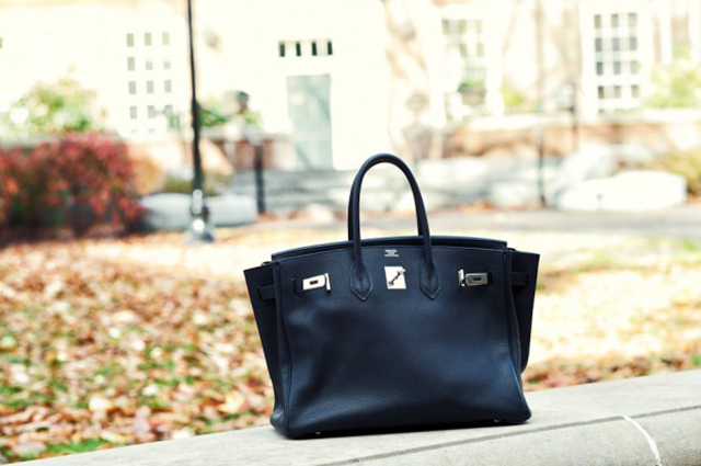 Hermes Birkin Fall Outdoors